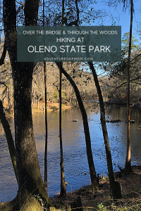 Over the Bridge & Thru the Woods: Hiking at Florida's  O'Leno State Park